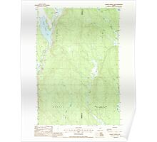 Maine USGS Historical Map Salmon Stream Lake 102937 1988 24000 Poster