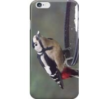 Great Spotted Woodpecker Eating Peanut Cake iPhone Case/Skin