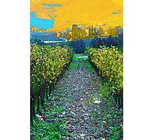 Toscana Photographic Print