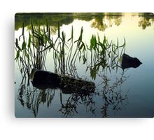 Reflective Waters Canvas Print