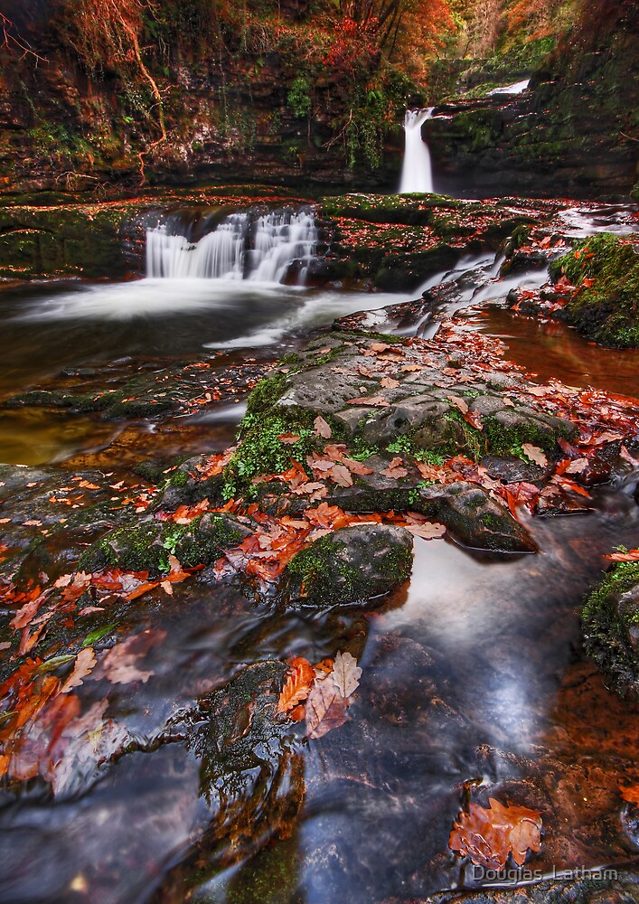 An Autumns Day - Brecon Beacons by Douglas  Latham