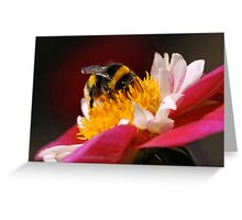 Bumble-Bee in the Spotlight Greeting Card