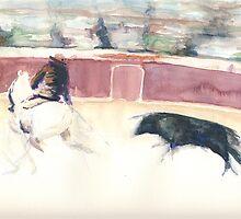 toro & picador by J-C Saint-Pô