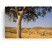 Camping out in Damaraland Canvas Print
