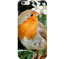 This little chap is costing a fortune in seeds. iPhone Case/Skin