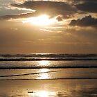 Golden Sunset by Piskins72