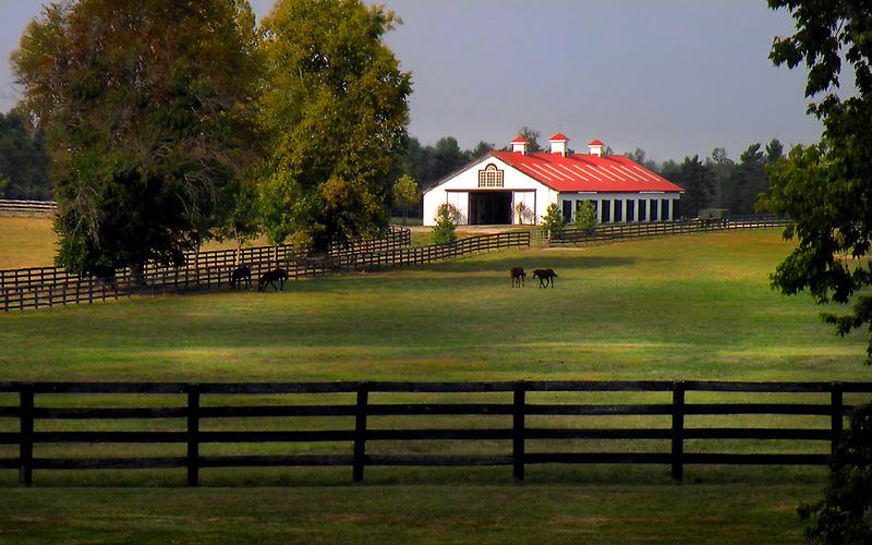 Lexington Horse Barn by Gary Pope