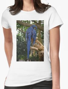 National Aviary Pittsburgh Series - 18 Womens Fitted T-Shirt