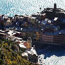Vernazza from the top of the hill by Monica Di Carlo
