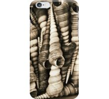 Vintage shell collection in sepia iPhone Case/Skin