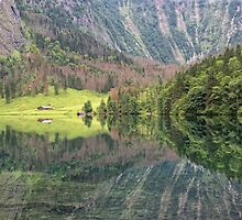 Nature's Mirror by Yair Karelic