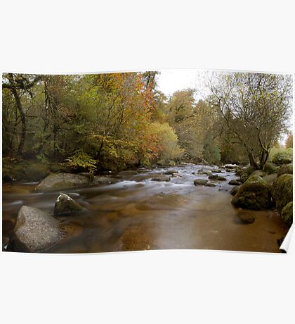 River Dart, on Dartmoor Poster