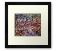 The Bend in The Stream Framed Print