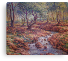 The Bend in The Stream Canvas Print