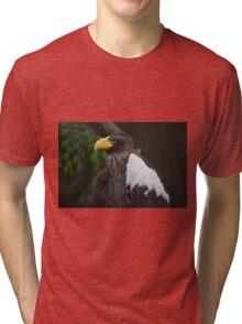 National Aviary Pittsburgh Series - 24 Tri-blend T-Shirt