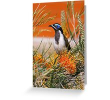 Blue-faced Honey Eater Greeting Card