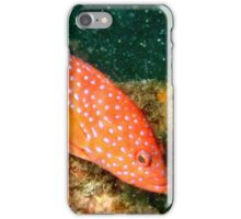 Fish Tropical iPhone Case/Skin