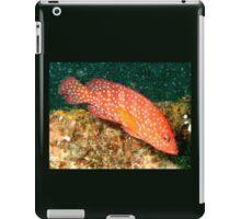 Fish Tropical iPad Case/Skin