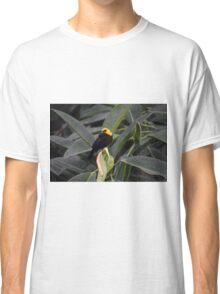 National Aviary Pittsburgh Series - 26 Classic T-Shirt
