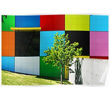 Coloured Squares and Green Tree Poster