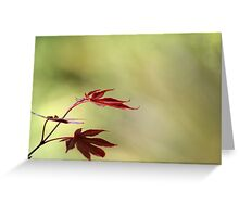 The seasons are what a symphony ought to be:  four perfect movements in harmony with each other Greeting Card