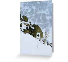 Black Diamond Greeting Card