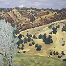 Onkaparinga Gorge SA by Alexandra Felgate