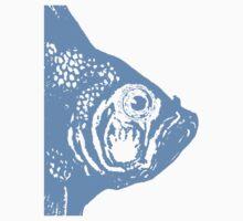 Big Blue Fish Head by Zehda