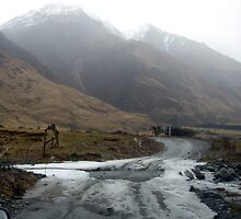 Icey Creek Crossing by Cheryl Parkes