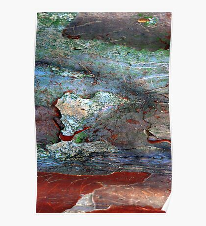 Rock Pools Poster