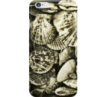 Vintage scallop shell collection in sepia iPhone Case/Skin