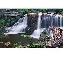 1059-Jaguar Waterfalls Photographic Print