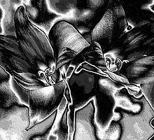 Rain Lilies - BW by Donna Adamski