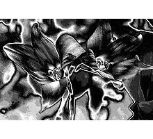 Rain Lilies - BW Photographic Print