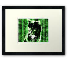 Matrix Cat Framed Print