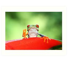 """""""Live long and Prosper"""" Red-eyed Tree Frog Art Print"""