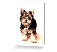 cinderella penelopes dogs Greeting Card