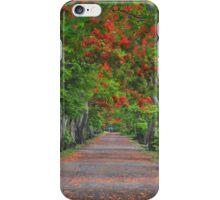 Flamboyant Alleay iPhone Case/Skin