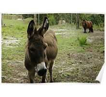 Donkey and Nugget Poster