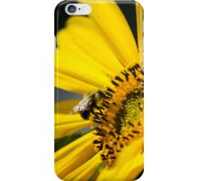 Sunflower and Bee iPhone Case/Skin