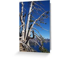 On the Edge! Greeting Card