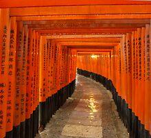 Fushimi Inari-Taisha by Jack Reynolds