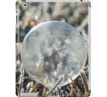 Frozen Morning Light  iPad Case/Skin