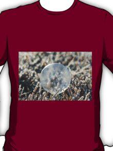 Frozen Morning Light  T-Shirt