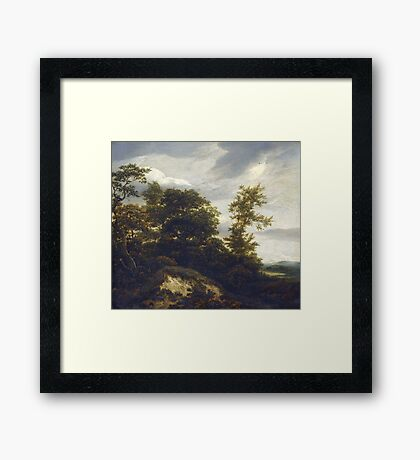 Iacob van Ruisdael –  A Wooded Dune Landscape (c. 1648) Framed Print