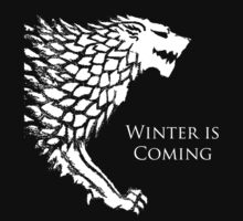 Winter is Coming by Dazakip