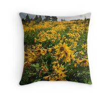 Idaho Arrowleaf Balsomroot Throw Pillow