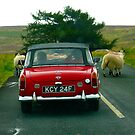 TRAFFIC JAM IN YORKSHIRE by amulya