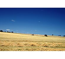 SA Country Photographic Print