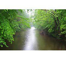 Davidson River Photographic Print